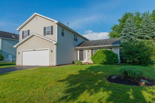 700 Hackberry Lane, Algonquin, IL 60102 (MLS #10529940) :: John Lyons Real Estate