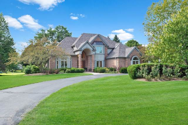 25828 N Arrowhead Drive, Long Grove, IL 60060 (MLS #10529980) :: Touchstone Group