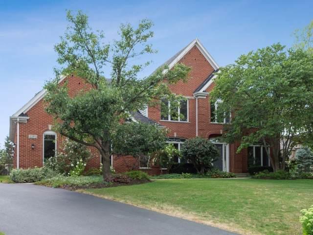 22935 N North Woodcrest Lane, Kildeer, IL 60047 (MLS #10530089) :: Helen Oliveri Real Estate