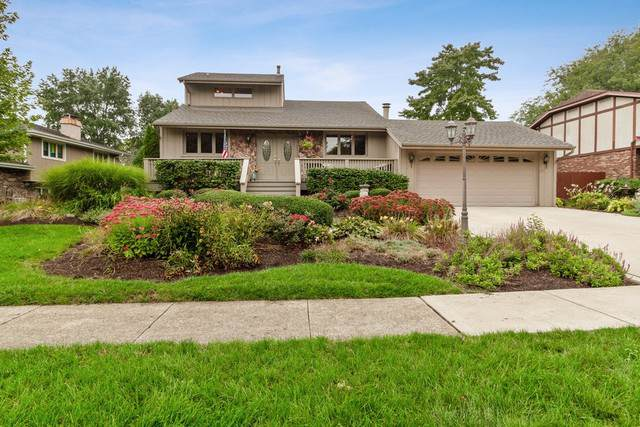 1613 Andrea Drive, New Lenox, IL 60451 (MLS #10530988) :: Angela Walker Homes Real Estate Group