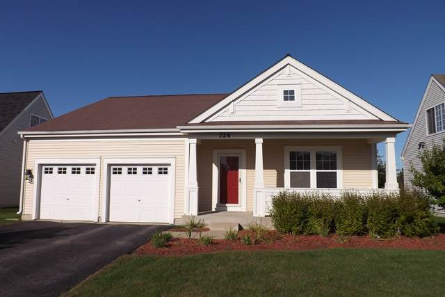 724 S Winchester Drive, Round Lake, IL 60073 (MLS #10531261) :: Property Consultants Realty