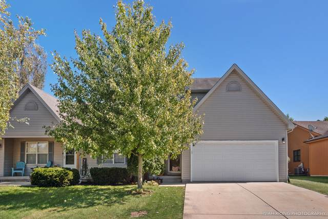 1596 Walsh Drive, Yorkville, IL 60560 (MLS #10531456) :: BNRealty