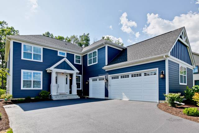 23276 N Sanctuary Club Drive, Kildeer, IL 60047 (MLS #10531858) :: Helen Oliveri Real Estate