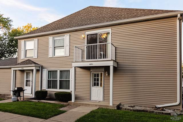 425 James Court D, Glendale Heights, IL 60139 (MLS #10532028) :: Property Consultants Realty