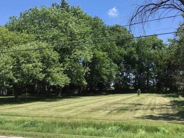 Lots 7 & 8 of 325 S Mitchell Street, Braceville, IL 60407 (MLS #10532296) :: Littlefield Group