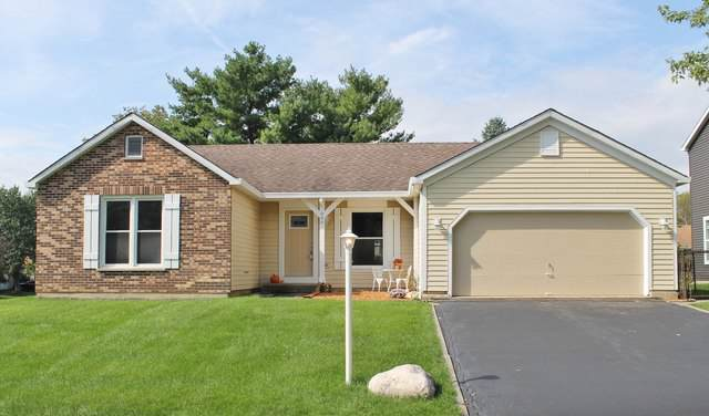 808 Brentwood Drive, Cary, IL 60013 (MLS #10533689) :: Baz Realty Network | Keller Williams Elite