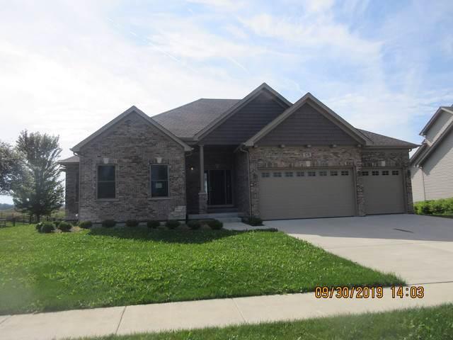 174 Amherst Circle, Oswego, IL 60543 (MLS #10533753) :: O'Neil Property Group
