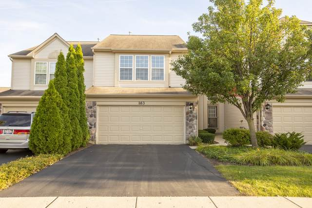 163 W Buckingham Drive -, Round Lake, IL 60073 (MLS #10533781) :: Lewke Partners