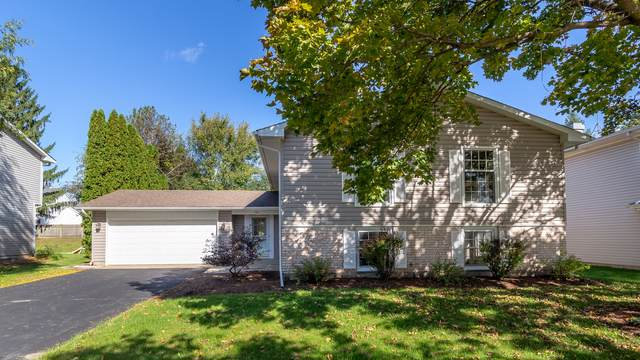 780 Merrimac Street, Cary, IL 60013 (MLS #10533915) :: Property Consultants Realty