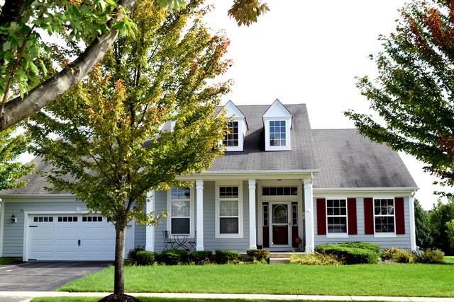 315 Copper Springs Lane, Elgin, IL 60124 (MLS #10534034) :: Century 21 Affiliated