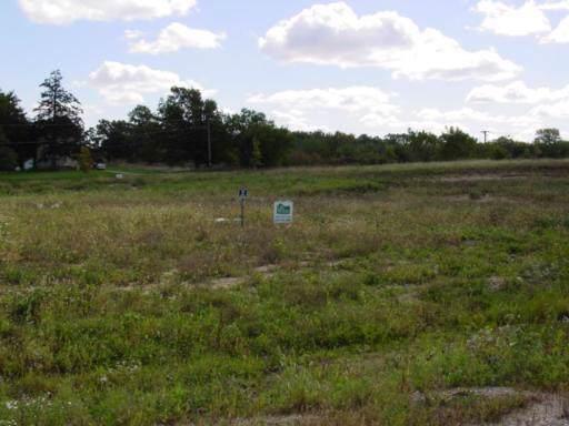 Lot 17 Savanna Court, Yorkville, IL 60560 (MLS #10534759) :: Jacqui Miller Homes