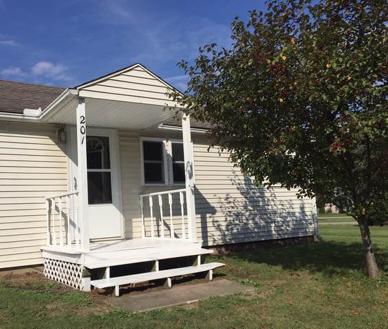 201 S 1st Street, TOLONO, IL 61880 (MLS #10534896) :: Ryan Dallas Real Estate