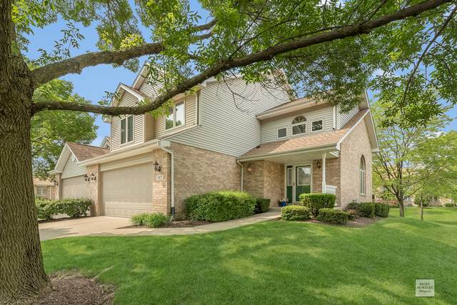 157 Harper Lane, Lemont, IL 60439 (MLS #10535192) :: Property Consultants Realty
