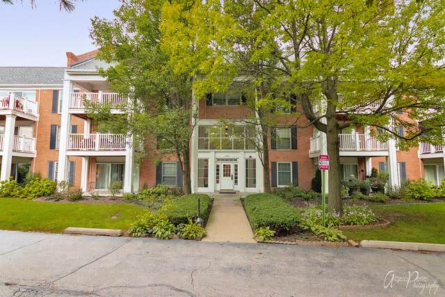 5500 Carriageway Drive 307C, Rolling Meadows, IL 60008 (MLS #10536618) :: The Perotti Group   Compass Real Estate