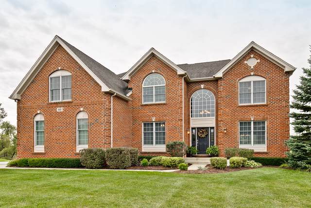 82 Tournament Drive N, Hawthorn Woods, IL 60047 (MLS #10536920) :: The Dena Furlow Team - Keller Williams Realty