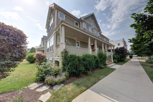 3944 N Kilbourn Avenue, Chicago, IL 60641 (MLS #10537016) :: Property Consultants Realty