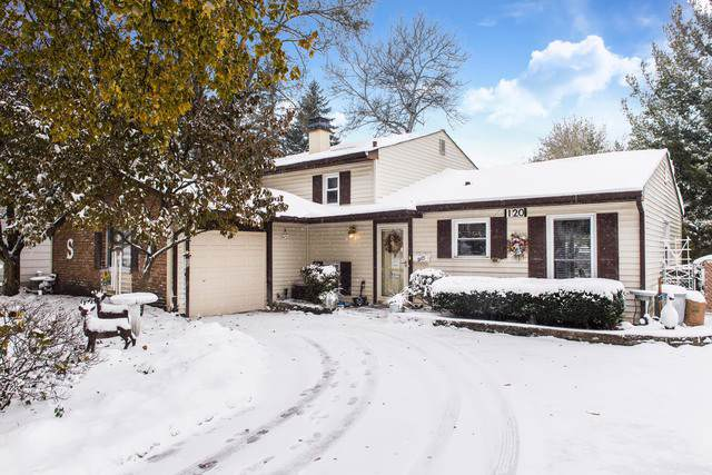120 Armitage Avenue, Glendale Heights, IL 60139 (MLS #10537685) :: Ani Real Estate