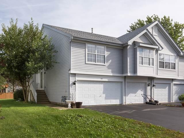 407 Gloria Lane, Oswego, IL 60543 (MLS #10538263) :: The Wexler Group at Keller Williams Preferred Realty