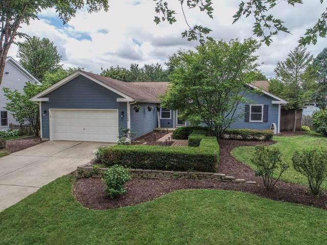 55 Feece Drive, Batavia, IL 60510 (MLS #10538510) :: Baz Realty Network | Keller Williams Elite