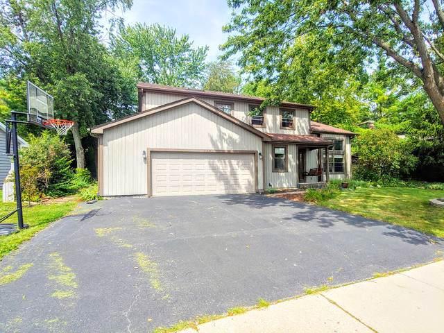 114 Lorraine Drive, Lake Zurich, IL 60047 (MLS #10539067) :: Angela Walker Homes Real Estate Group