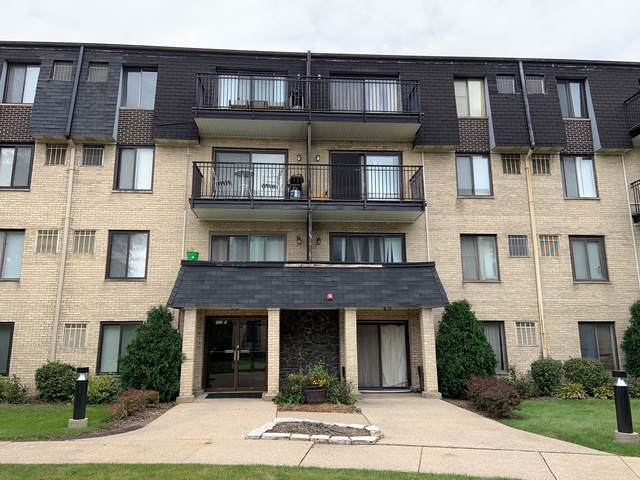 10735 5th Avenue #203, Countryside, IL 60525 (MLS #10539093) :: Touchstone Group
