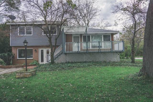 28939 W May Street, Spring Grove, IL 60081 (MLS #10539596) :: Property Consultants Realty