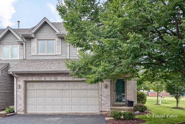 825 Casey Lane, Hampshire, IL 60140 (MLS #10539619) :: The Wexler Group at Keller Williams Preferred Realty
