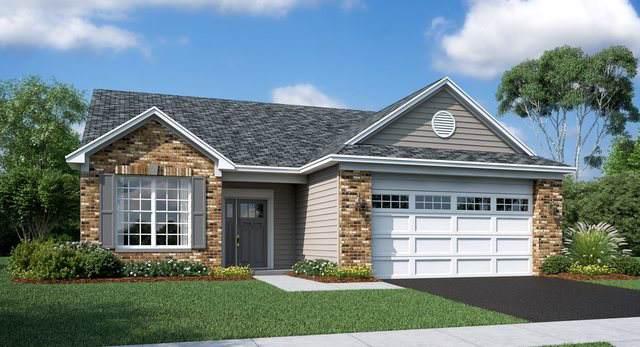 2190 Indigo Drive, Algonquin, IL 60102 (MLS #10540480) :: Property Consultants Realty
