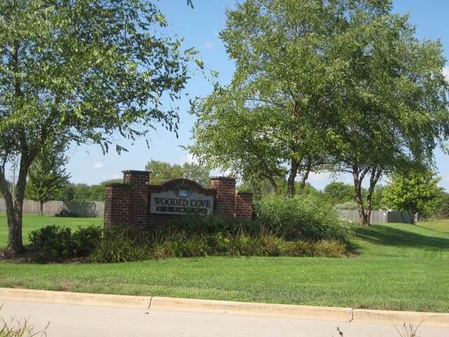 21253 S Wooded Cove Drive, Elwood, IL 60421 (MLS #10540524) :: Baz Realty Network | Keller Williams Elite