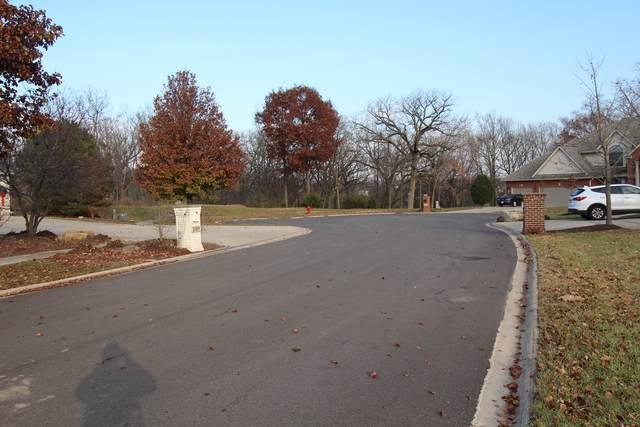 24850 Jacob Court, Shorewood, IL 60404 (MLS #10540725) :: John Lyons Real Estate