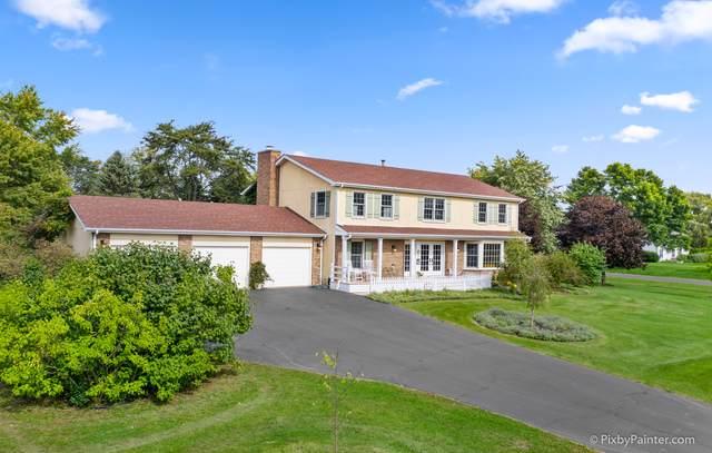 23332 W Quail Court, Deer Park, IL 60010 (MLS #10541711) :: Ani Real Estate