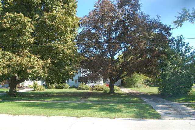 208 N River Street, Batavia, IL 60510 (MLS #10541932) :: Property Consultants Realty
