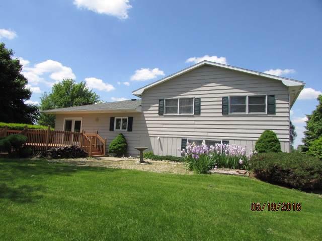 41559 N 70 E Road, Rankin, IL 60960 (MLS #10542204) :: Helen Oliveri Real Estate