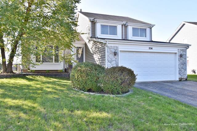 236 W Harvard Circle, South Elgin, IL 60177 (MLS #10542302) :: Suburban Life Realty