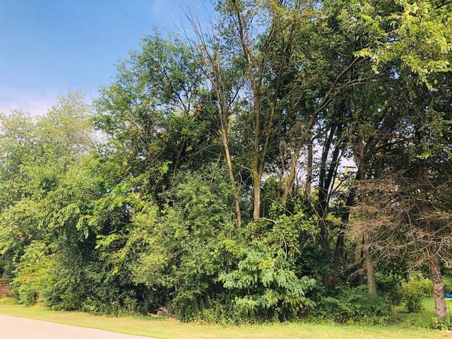 Lot 16 Ray Avenue, West Chicago, IL 60185 (MLS #10542454) :: Angela Walker Homes Real Estate Group
