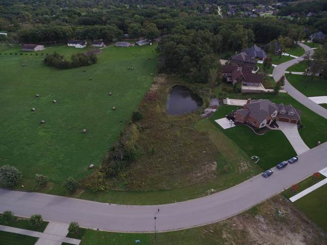 13815 Stonebridge Woods Crossing, Homer Glen, IL 60491 (MLS #10542925) :: Angela Walker Homes Real Estate Group