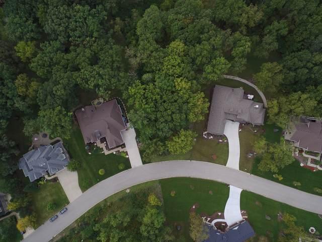 16308 Lakewood Path, Homer Glen, IL 60491 (MLS #10542929) :: Angela Walker Homes Real Estate Group