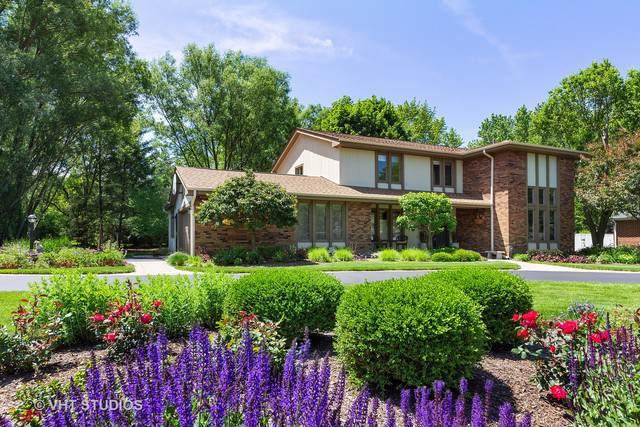 250 Wyngate Drive, Barrington, IL 60010 (MLS #10543030) :: Ani Real Estate