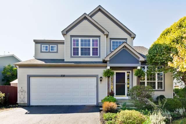 737 Sun Lake Road, Lake Villa, IL 60046 (MLS #10543168) :: Angela Walker Homes Real Estate Group