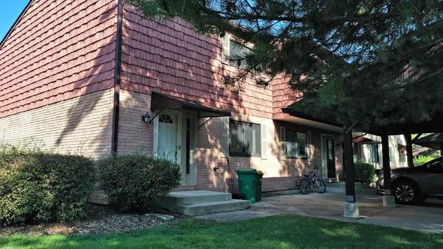 446 Dakota Trail, Wheeling, IL 60090 (MLS #10543312) :: Helen Oliveri Real Estate