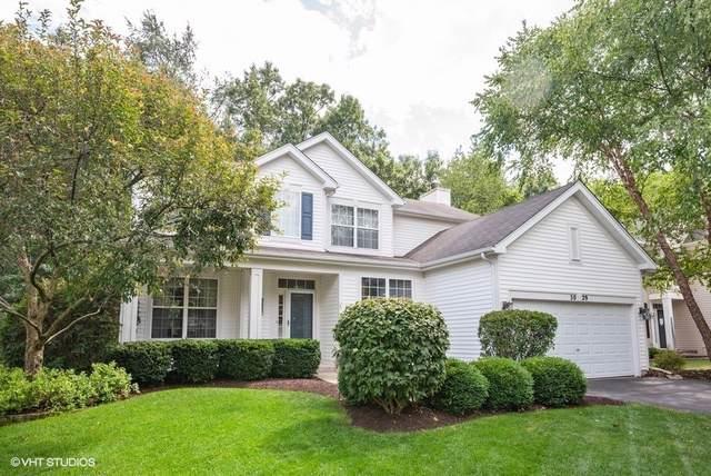 3029 Shenandoah Drive, Carpentersville, IL 60110 (MLS #10543396) :: Suburban Life Realty