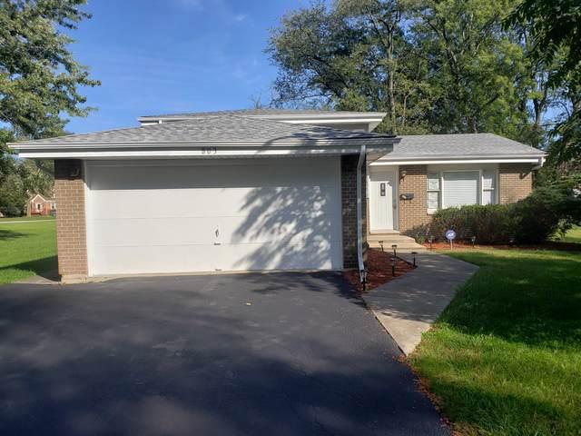 803 Sangamon Street, Chicago Heights, IL 60411 (MLS #10543432) :: John Lyons Real Estate