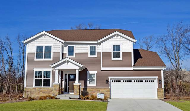 147 Brookside Circle, Hawthorn Woods, IL 60047 (MLS #10543522) :: Helen Oliveri Real Estate