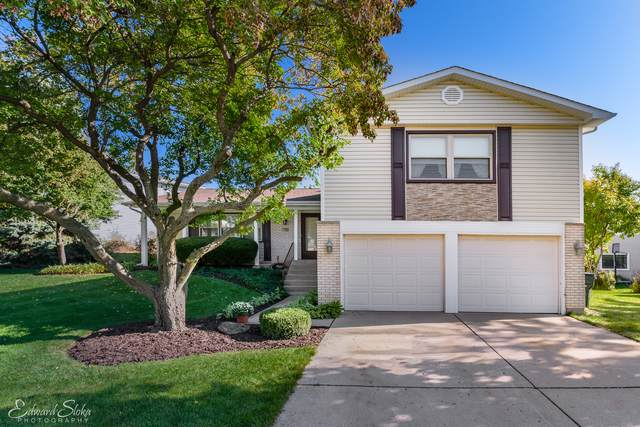 4231 N Sturbridge Drive, Hoffman Estates, IL 60192 (MLS #10543626) :: Ani Real Estate
