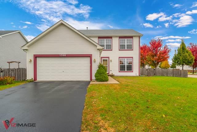 1300 N Glenridge Court, Minooka, IL 60447 (MLS #10543713) :: Berkshire Hathaway HomeServices Snyder Real Estate