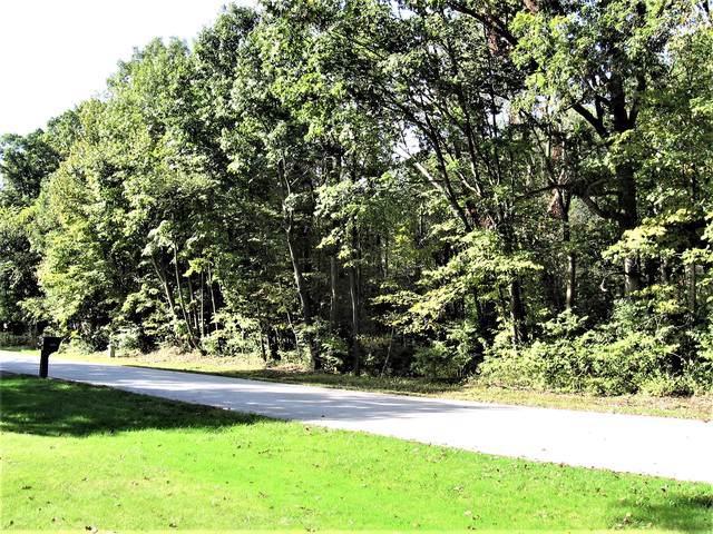 Lot 5 Gaisor Drive, Crete, IL 60417 (MLS #10543810) :: Property Consultants Realty