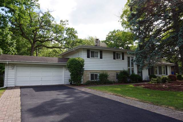 927 Rosewood Drive, Carpentersville, IL 60110 (MLS #10543940) :: Suburban Life Realty