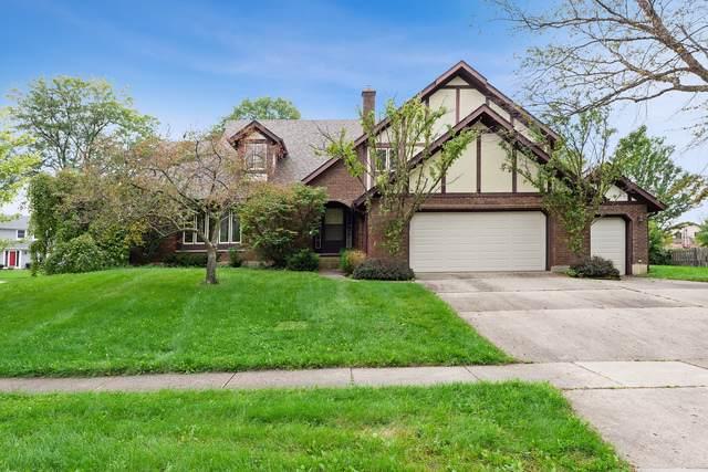 3500 Wilshire Drive, Hoffman Estates, IL 60067 (MLS #10544006) :: Ani Real Estate