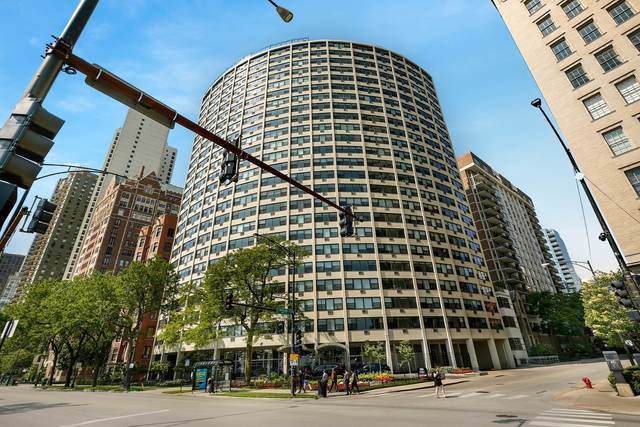 1150 N Lake Shore Drive 15F, Chicago, IL 60611 (MLS #10544113) :: Property Consultants Realty