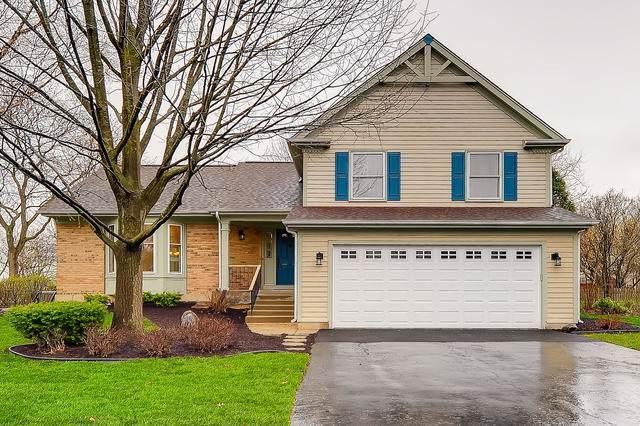 325 Kingsbury Drive, Schaumburg, IL 60193 (MLS #10544459) :: Ani Real Estate